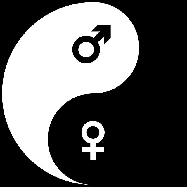 masculinité féminité nuances